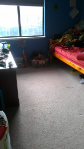 Bug's Room - After